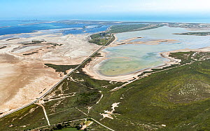 Aerial view of Lower Rio Grande Valley and coast north of Rio Grande river to South Padre Island, Cameron County, Texas, USA. July 2019.  -  Wendy Shattil