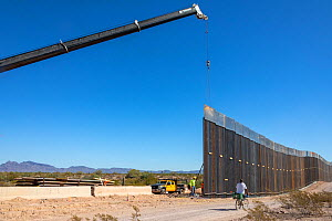 Border wall construction, view from Sonoyta, Mexico towards Organ Pipe Cactus National Monument, Arizona, USA. November 2019.  -  Wendy Shattil