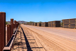 Construction of border wall, area cleared of Sonoran Desert vegetation. Between Sonoyta, Mexico and Organ Pipe Cactus National Monument, Arizona, USA. 2019.  -  Wendy Shattil