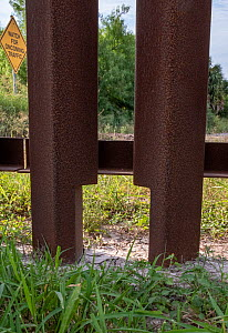 Border wall with seven inch wide opening at bottom for wildlife. Southmost Preserve, Nature Conservancy Reserve, Brownsville, Texas, USA. 2019.  -  Wendy Shattil