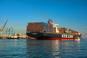 The 300 meter NYK Andromeda gearless container ship departing Long Beach Harbor, California, USA. August 2007.  -  David Fleetham