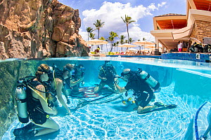 Scuba diving instructor Anthony Manion practices skills with four students in a hotel pool on Maui, Hawaii. Model released. - David Fleetham