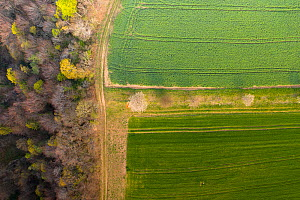 Aerial view of farmland and woodland in early spring, March, Switzerland  -  Laurent Geslin