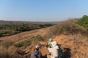 Hikers watching African elephants (Loxodonta africana) in dry riverbed, Hluluwe-Imfolosi Park, Kwazulu Natal, South Africa  -  Rhonda Klevansky