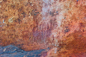 San rock art of group of people, Sevilla Rock Art Trail, Cedarberg, South Africa.  -  Rhonda Klevansky