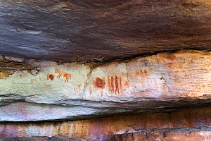 Rock painting of hunters and animals, Sevilla Rock Art Trail, Cedarberg, South Africa.  -  Rhonda Klevansky
