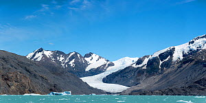 Chico glacier seen from a boat on O'Higgens Lake. Bernado O'Higgens National Park, Patagonia, on the border of Chile and Argentina. January 2017.  -  Rhonda Klevansky