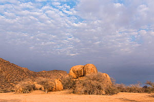 Rocky landscape of the Erongo Mountain Conservancy, Namibia  -  Rhonda Klevansky