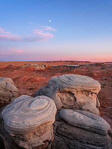Eroded cap-rock with concentric circles of the Curtis formation atop Entrada sandstone, at sunset, in San Rafael Desert. BLM Wilderness Study Area, Hanksville, Utah, USA. October 2019. - Jack Dykinga
