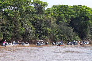 Tourists on the River Cuiaba, searching for jaguar, Pantanal, Mato Grosso, Brazil.  -  Sylvain Cordier