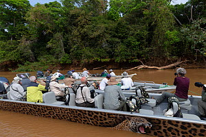 Tourists on the river Cuiaba, searching for jaguar Pantanal, Mato Grosso, Brazil.  -  Sylvain Cordier