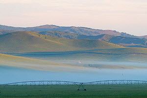 Hills of Bashang Grassland in morning mist, irrigator in foreground. Near Zhangjiakou, Hebei Province, Inner Mongolia, China. July 2018.  -  Sylvain Cordier