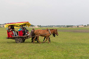 Group of tourists in horse drawn cart. Bashang Grassland, near Zhangjiakou, Hebei Province, Inner Mongolia, China. July 2018.  -  Sylvain Cordier