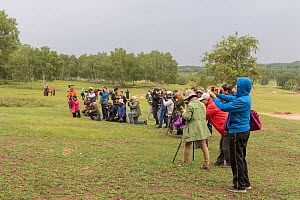 Group of tourists photographing a Mongol woman with horse (out of shot). Bashang Grassland, near Zhangjiakou, Hebei Province, Inner Mongolia, China. 2018.  -  Sylvain Cordier