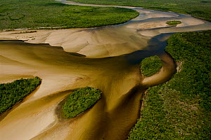 Aerial view of the Jardine River, with islands and sandbars of different depths creating patterns. Northern Cape York Peninsula, Australia. . June 2012  -  Tim  Laman