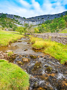 River at base of limestone pavement. Malham Cove, Yorkshire Dales National Park, England, UK. September 2019.  -  Gary  K. Smith