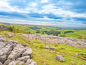 Limestone pavement. Malham Cove, Yorkshire Dales National Park, England, UK. September 2019.  -  Gary  K. Smith