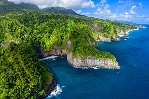 Aerial view of Glassy Point, East Coast of Dominica, West Indies. December 2019. Drone photo. Stitched panorama.  -  Derek Galon