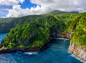 Aerial view of Glassy Point, East Coast of Dominica, West Indies. December 2019. Stitched panorama.  -  Derek Galon