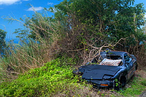 Cars destroyed by hurricane Maria (2017) Dominica, West Indies, November 2018  -  Derek Galon