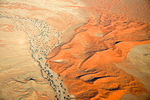 Dried creek and sand dunes in Tsondabvlei, Namib Desert, Namibia, August  -  Oriol  Alamany