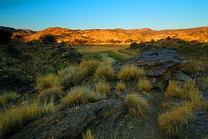 Highland savannah at sunset, Avis Dam in Windhoek, Namibia, October  -  Oriol  Alamany