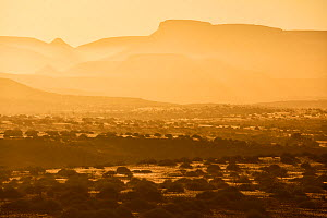 Sunrise in the rocky desert in Palmwag Conservancy, Damaraland, Namibia, August  -  Oriol  Alamany