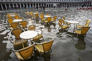 Outdoor seating during flooding in Venice, Italy, December 2019.  -  Milan Radisics
