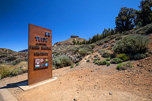 Entrance to the Teide National Park, UNESCO World Heritage Site with Mount Guajara / El Sombrero de Chasna, a flat topped circular mountain 2411m high closed to the town of Vilaflor, Tenerife, Canary... - Franco  Banfi