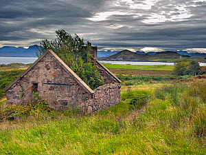 RF - Ruined croft, Wester Ross, Scotland, September 2019. (This image may be licensed either as rights managed or royalty free.)  -  Ernie  Janes