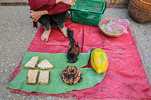 Street market stall selling meat, honeycomb, fruit and a dead bird. Luang Prabang, Laos.  -  Jo-Anne McArthur / We Animals