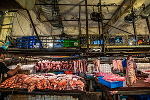 Slabs of pig meat are stacked in the open under small ceiling fans at a wet market in Taipei, Taiwan. - Jo-Anne McArthur / We Animals