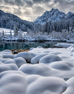 Zelenci Springs Reserve in winter, Slovenia, February 2018  -  Guy Edwardes