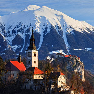 Bled Island and Assumption of Mary's Pilgrimage Church, Bled Castle and the Julian Alps beyond, Bled, Gorenjska, Slovenia, Europe, March 2009  -  Guy Edwardes
