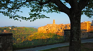 Ancient town of Pitigliano in early morning light, Tuscany, Italy, April 2010.  -  Guy Edwardes