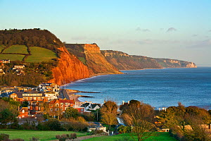 Sidmouth and the red sandstone cliffs of the Jurassic Coast World Heritage Site, Devon, England, UK, October 2009.  -  Guy Edwardes