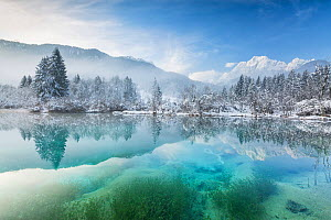 Sava Spring in winter with reflections in lake, Julian Alps, Kranska Gora, Slovenia, January 2014.  -  Guy Edwardes