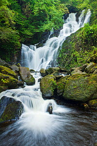Torc Waterfall, Killarney National Park, Co. Kerry, Republic of Ireland, September 2007.  -  Guy Edwardes