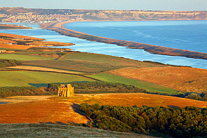 St. Catherine's Chapel with the Fleet and Chesil Beach, Dorset, England, UK. July.  -  Guy Edwardes