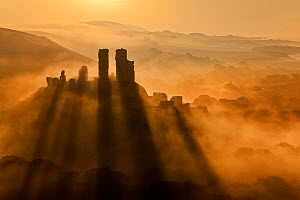 Corfe Castle at dawn surrounded by mist, Dorset, England, September 2009.  -  Guy Edwardes