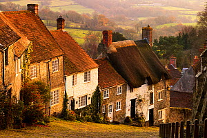 Gold Hill, Shaftesbury, Dorset, England, UK. November 2007  -  Guy Edwardes