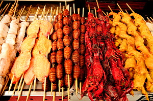 Butterfly pupae on skewers, next to chicken and crab skewers. Open-air food market in central Beijing, China.  -  Enrique Lopez-Tapia