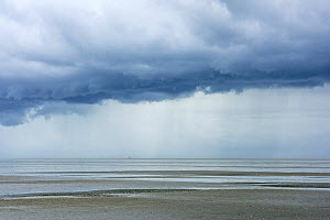 Storm clouds at low tide, St. Peter Ording, Schleswig-Holstein Wadden Sea National Park, Germany, September.  -  Sandra Bartocha