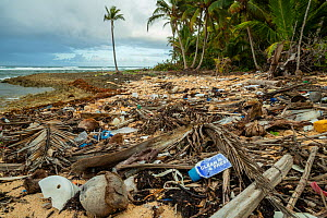 Plastic waste washed up at shore in Taco Bay, Humboldt National Park, Cuba.  -  Bruno D'Amicis