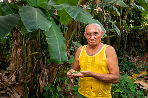 Farmer in Maisi, showing Cuban tree snails (Polymita picta) he protects in his garden. Cuba, March 2019  -  Bruno D'Amicis