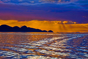 Early morning view, looking southeast from Gordon Channel. Gordon Channel, Queen Charlotte Strait, British Columbia, Canada. September.  -  David Hall