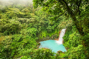 View of the Rio Celeste waterfall, tropical rainforest of Tenorio Volcano National Park, Costa Rica. The blue color arises due to a physical phenomenon known as Mie scattering triggered by the presenc...  -  Nick Hawkins