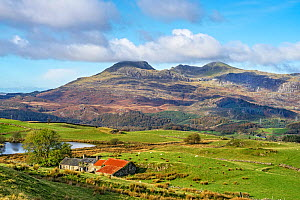 Moelwyn Mountains Moelwyn Bach left and Moelwyn Mawr right looking west from near Llan Festiniog showing the Stwlan Dam set in the mountainside North Wales, UK, October.  -  Alan Williams
