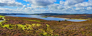 Llyn Brenig reservoir on Denbigh Moors used to manage flow in the River Dee in drought conditions to maintain water supply to North West England North Wales UK September 2019 222627  -  Alan Williams