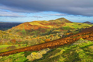 Caer Caradoc Hill viewed from Hope Bowdler Hill near Church Stretton and the Long Mynd Shropshire Hills UK November 2019.  -  Alan Williams
